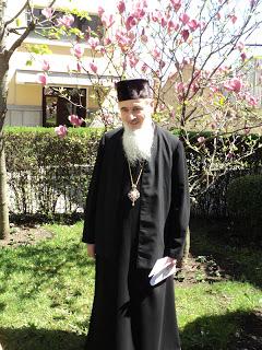 """""""I-am zis migdalului (magnoliei) sa-mi vorbeasca despre Dumnezeu… si migdalul a inflorit…!"""""""